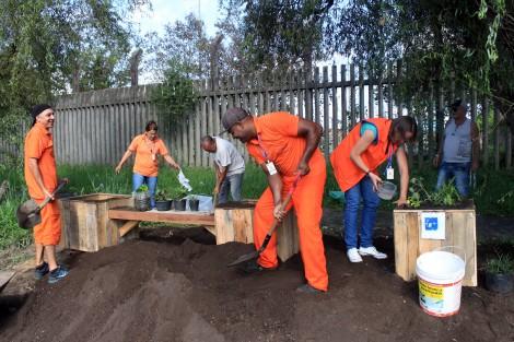 Porto Alegre: DMLU faz plantio urbano sustentável no bairro Sarandi