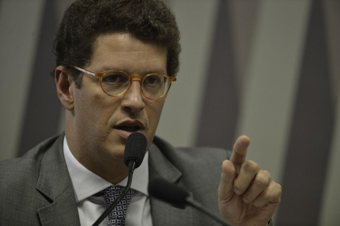Embaixada da Alemanha desmente Salles sobre novo acordo do Fundo Amazônia