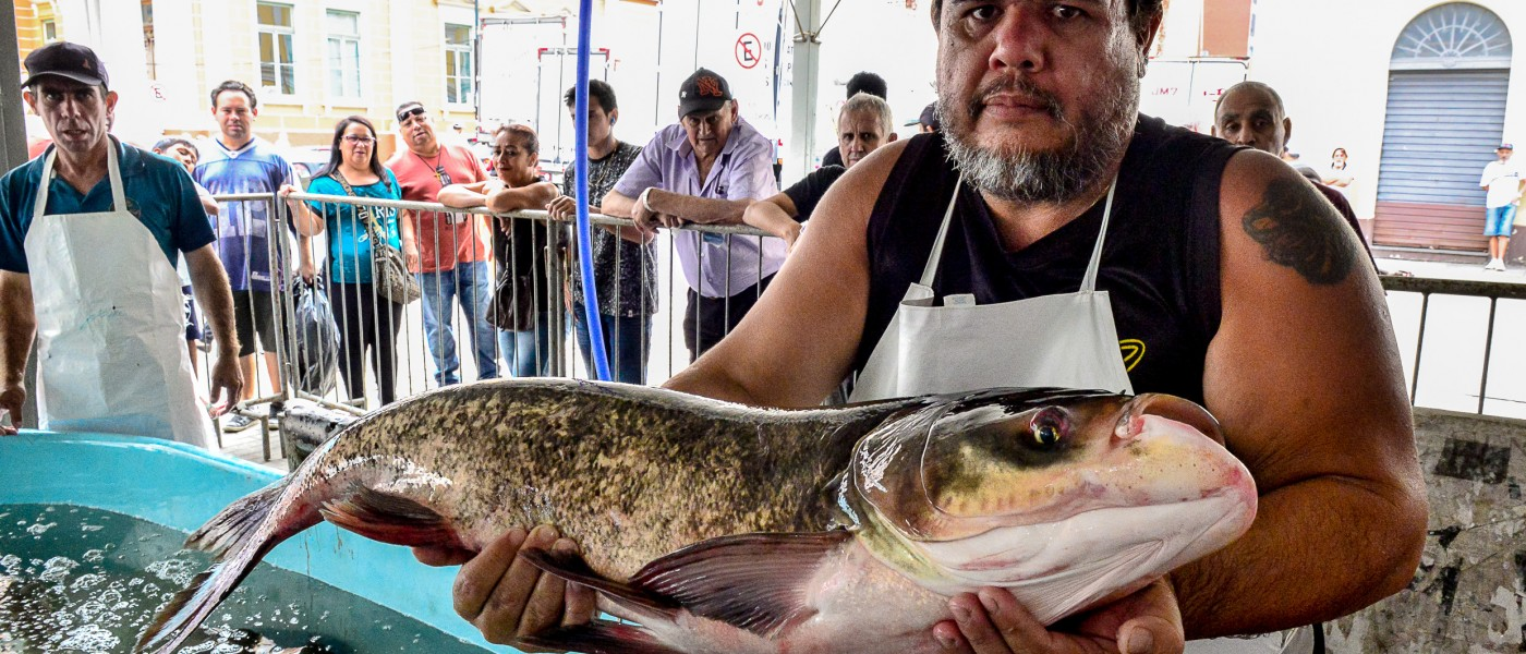 Porto Alegre: Feira do Peixe começa com expectativa de venda maior que em 2018