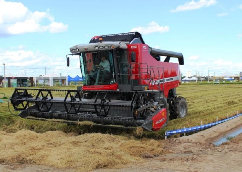 RS: Colheita da safra de arroz está próxima de ser finalizada