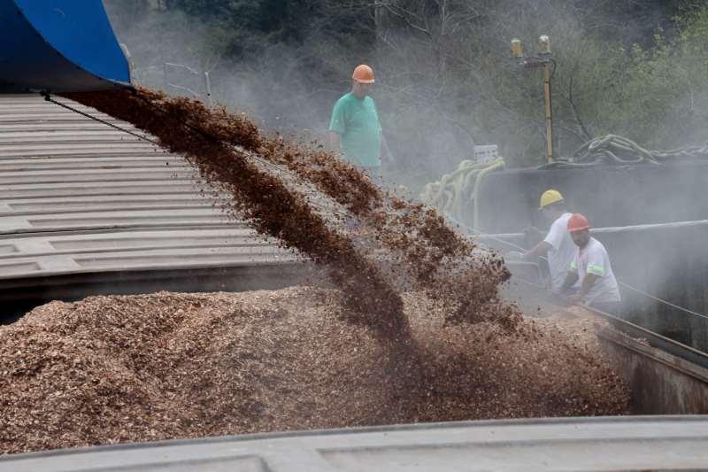 Biomassa é subutilizada no Rio Grande do Sul