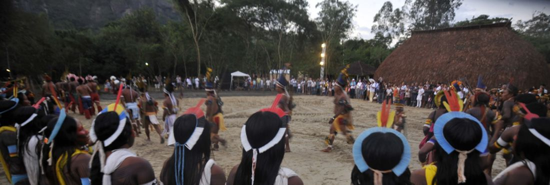 STF suspende MP de demarcação de terras indígenas