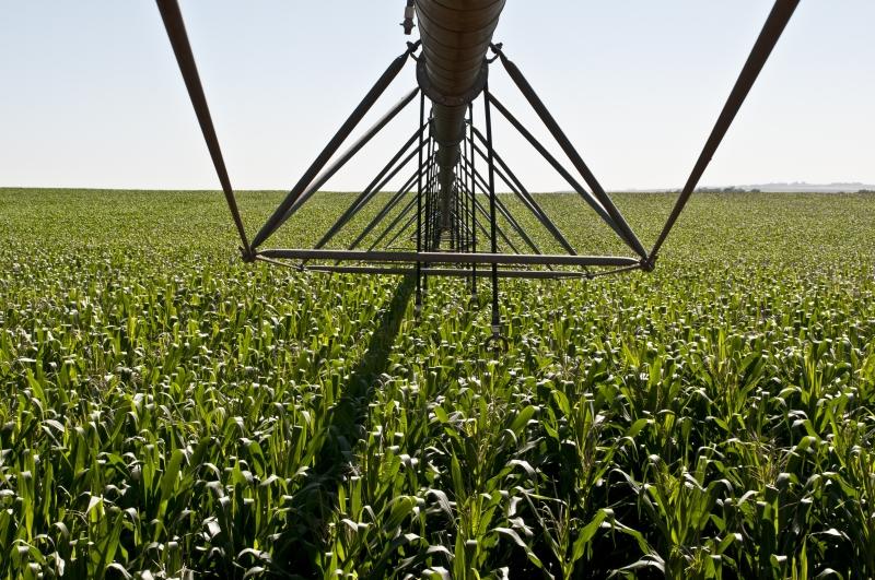 Safra 2018/2019 de grãos confirma novo recorde