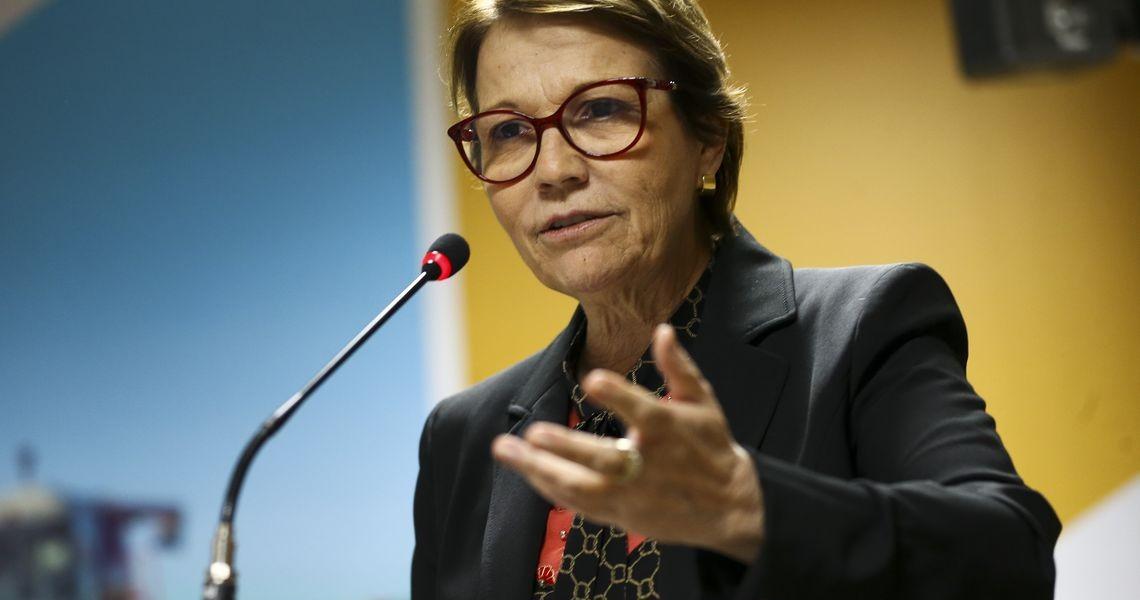 Ministra mostra experiência do Brasil com agricultura de baixo carbono