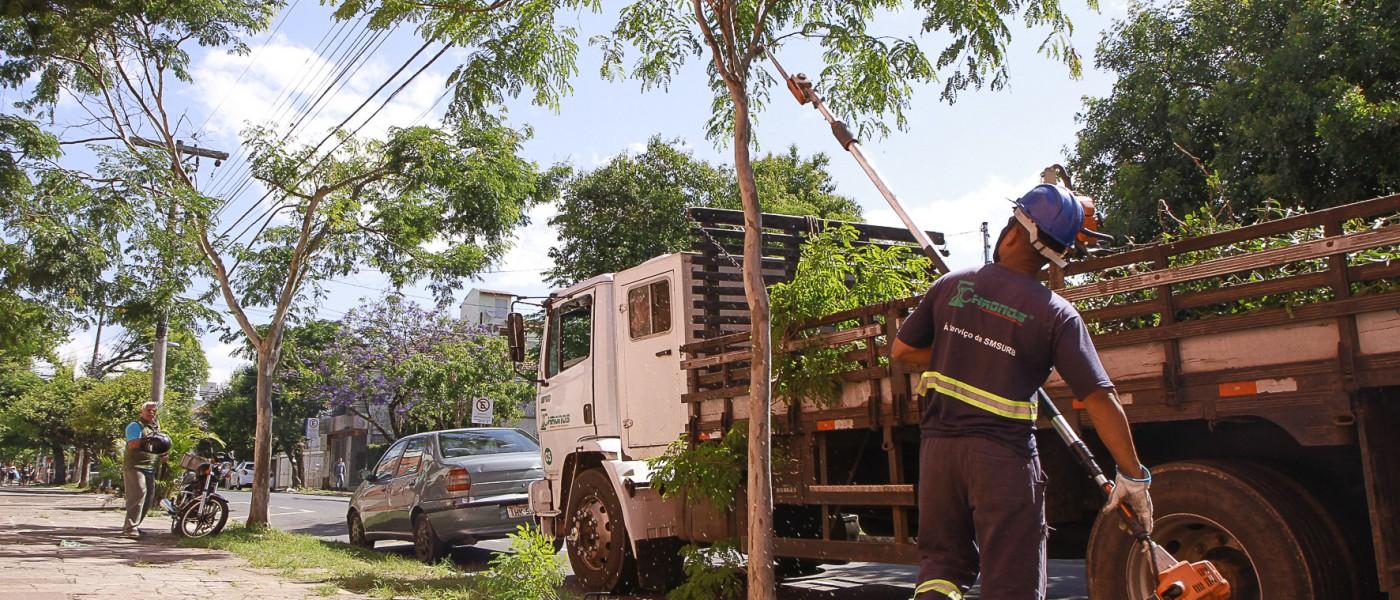 Ruas do bairro Azenha recebem manejo arbóreo preventivo