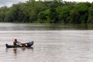 Amazônia: Brasil e Alemanha fazem cooperação para produção sustentável