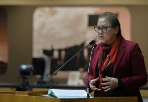 Lourdes Sprenger assume presidência interina da Câmara