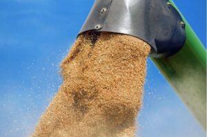 Conab promove reuniões no RS para atualizar custos do trigo, milho e soja; Jornal do Comércio